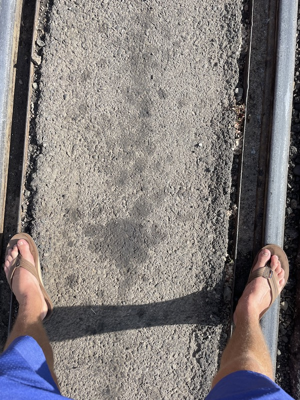 Name:  Narrow Gauge feet.jpeg Views: 240 Size:  278.4 KB