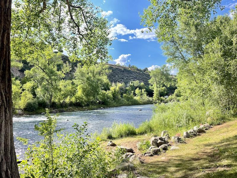 Name:  Riversdie.jpeg Views: 244 Size:  320.0 KB