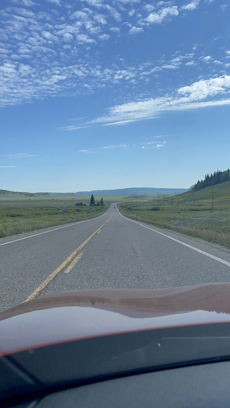 Name:  CO high country .JPG Views: 238 Size:  89.2 KB