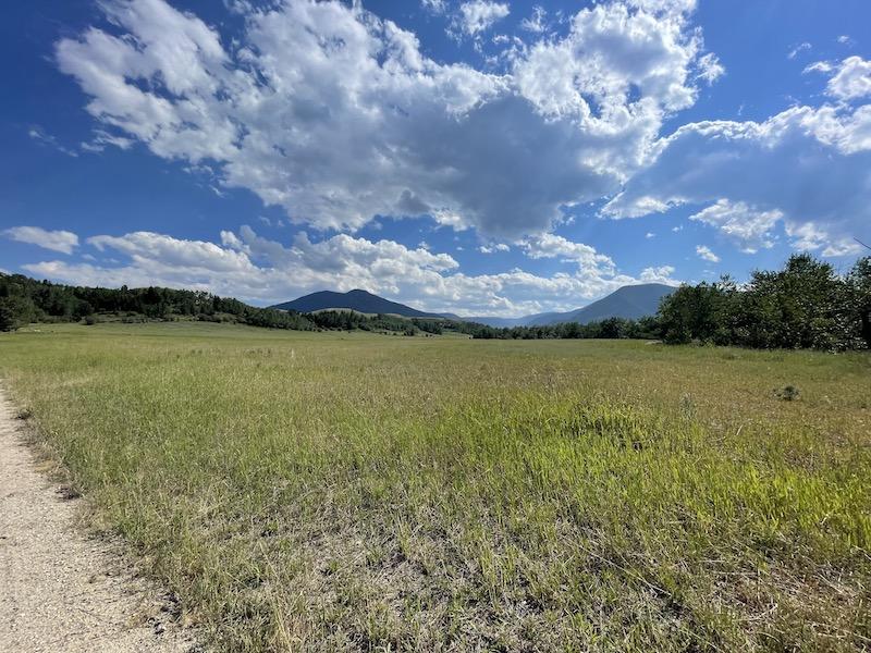 Name:  Red Lodge Run meadow.jpeg Views: 226 Size:  210.7 KB