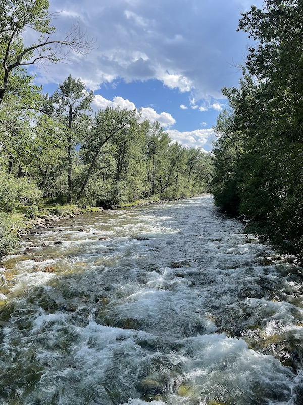Name:  Red Lodge Rock Creek.jpeg Views: 228 Size:  261.2 KB