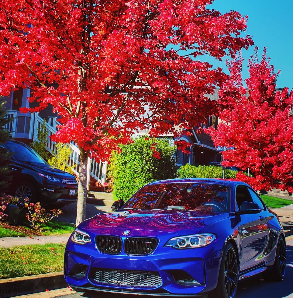 Name:  Bimmerpost Fall Photo.jpg