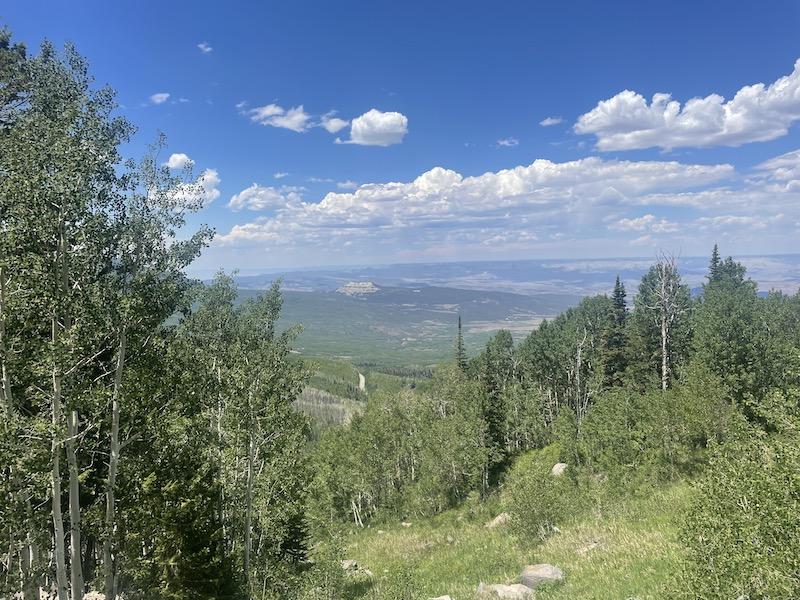 Name:  Grand Mesa Back view.jpeg Views: 249 Size:  213.2 KB